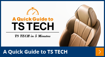 A Quick Guide to TS TECH
